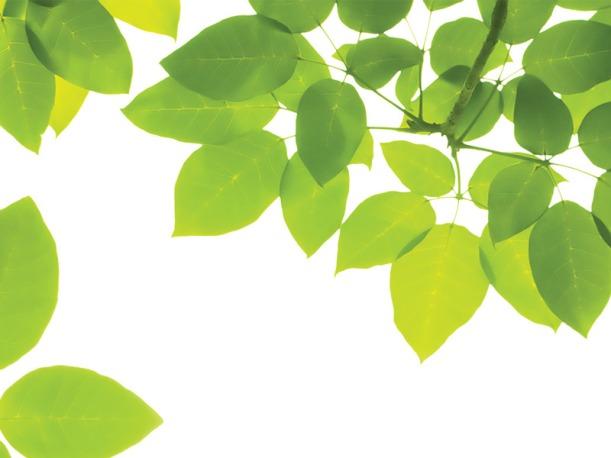 blog-greenmachiene-1016